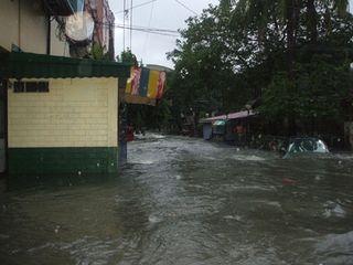 Flood2